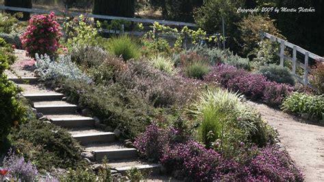 drought tolerant plants list california gardens