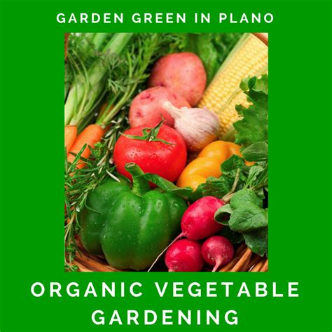 organic vegetable gardening city of plano reservations upcoming programs