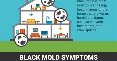 Mold Detox Symptoms by 8 Signs You Need A Black Mold Detox Health Problems