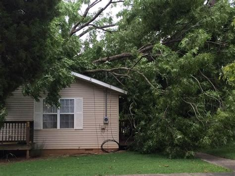 insurance trees near house 28 strong winds blamed for towering tree falling on house wbbj tv