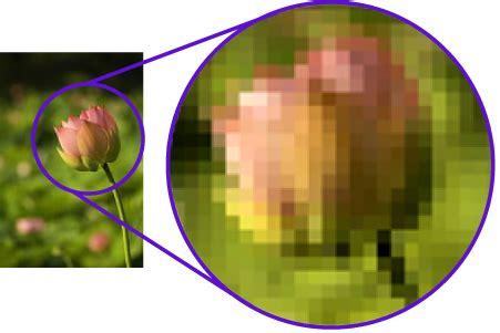tugas tik contoh gambar bitmap  vektor