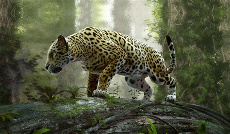 ver imagenes jaguar animal la salvaje muerte de un jaguar que estaba en cautiverio