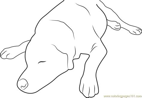 sleeping puppies coloring pages dog sleeping up coloring page free dog coloring pages