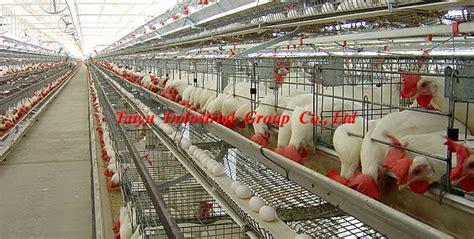 poultry farm house design layout poultry farm house design product equipment buy poultry farm house design