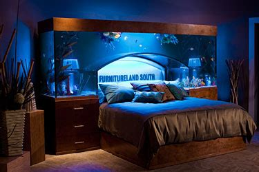 bed with aquarium headboard luxurious furnitureland south fish tank bed reviews