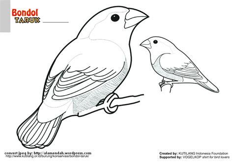 Batu Madu mewarnai gambar burung indonesia alamendah s