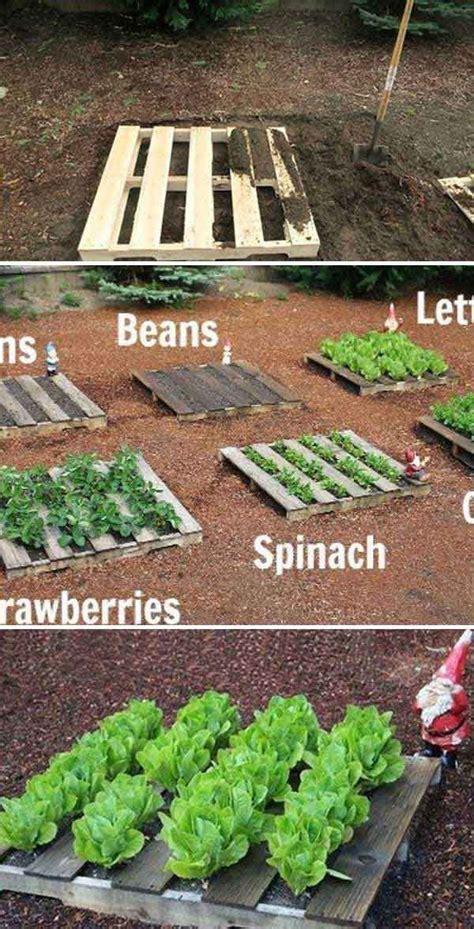Vegetable Garden Planning by Best 25 Vegetable Garden Design Ideas On