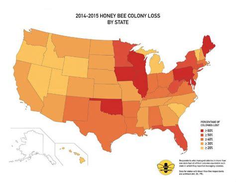 tavole di mortalità mortalita delle api negli stati uniti a livelli record