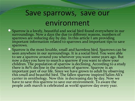 Save The Environment Essay by Essay On Save Our Environment