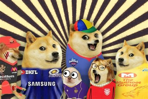 doge  cheems  dog memes  conquered tamil
