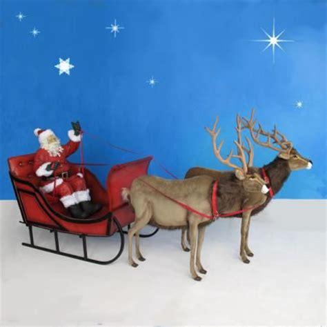 life size santa sleigh 2 reindeer 11 ft w sleigh is