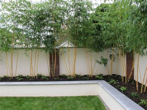 Rendered Walls For Gardens Bing Images Outdoor Wall Garden Designs