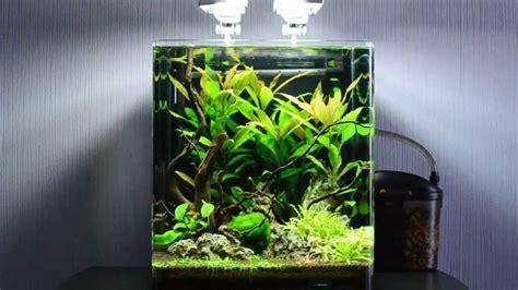 15 Liter Aquarium Bulatfish Bowl 1 best fish for 10 gallon fish tank setup which fish you