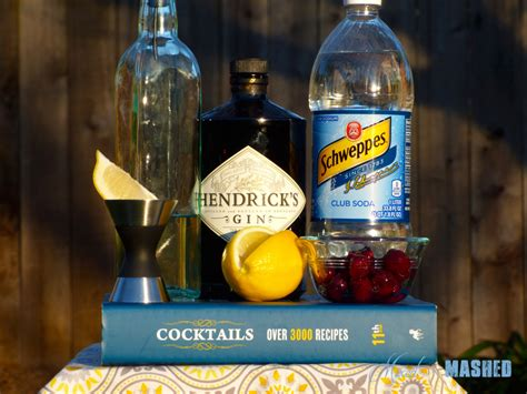 tom collins ingredients tom collins mixed and mashed