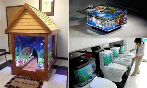 creative aquariums ideas for fish total survival