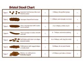 bristol stools and charts on