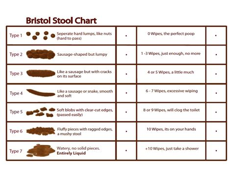 Bristol Stool Scale Pdf by Bristol S Stool Chart Gaps Diet Gaps Diet