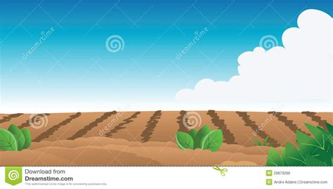 Farmhouse Design by Farm Field Royalty Free Stock Image Image 29879266