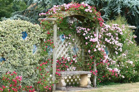 cottage gardening about the garden tilford cottage garden
