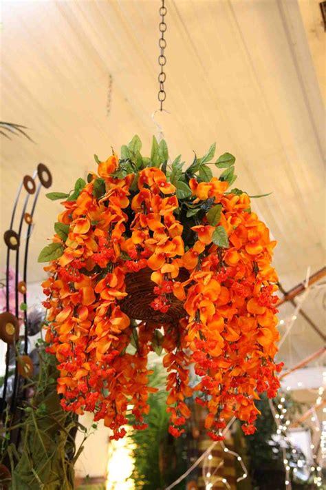 orange wisteria hanging basket evergreen   lake