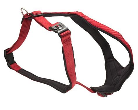comfort fit dog harness wolters padded comfort dog harnesses