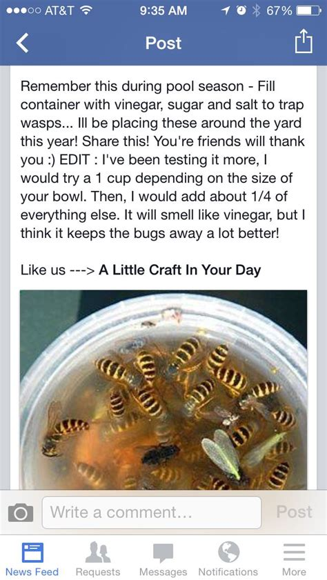 how to keep wasps away from house keep bees away good to know pinterest