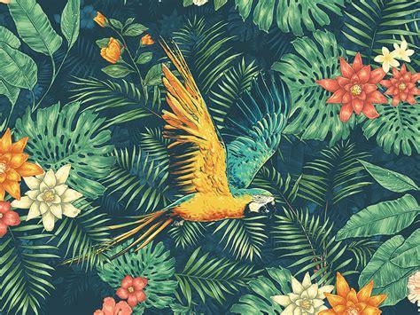 tropical wallpaper tropical wallpaper by david silverstein dribbble