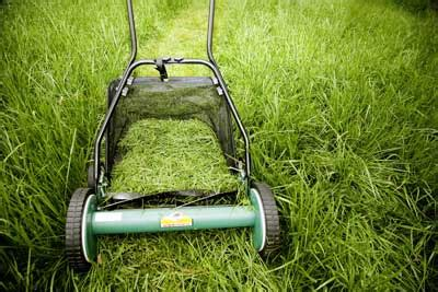 which is greener bagging your grass or leaving your