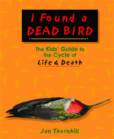 dead serious breaking the cycle of books i found a dead bird the guide to the cycle of