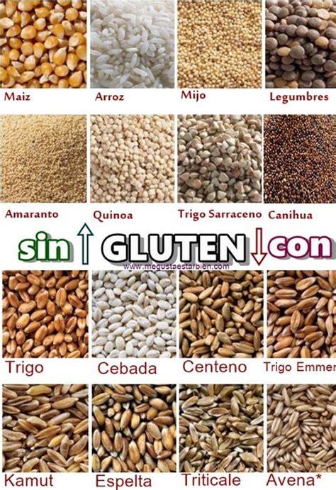 al grano y sin por qu 233 los sustitutos de harina de trigo te gustar 225 n m 225 s de lo que crees patio org 225 nico