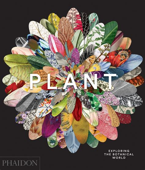 plant exploring the botanical 0714871486 plant exploring the botanical world general non fiction phaidon store
