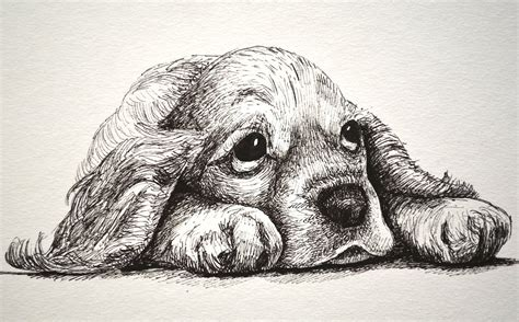 animales a lapiz youtube dibujos artisticos de amor a lapiz buscar con google