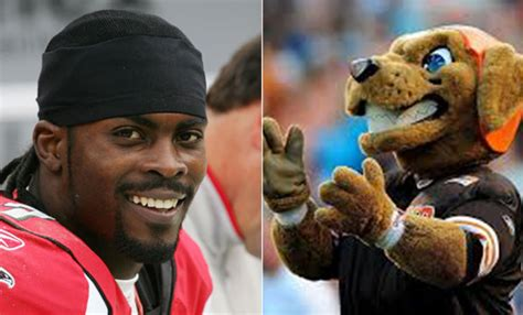 michael vick dogs michael vick inks deal with cleveland welcome to the pound empire sports news