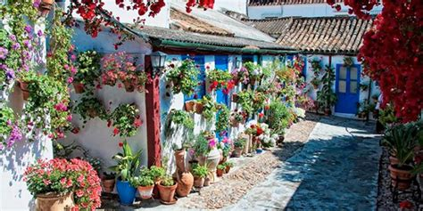 Roof Patio by C 243 Rdoba S Colorful Festival De Los Patios And Cultural