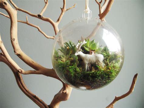 Handmade Terrariums - terrarium coletas de mim