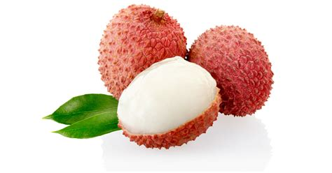 fruit similar to lychee image gallery leech fruit
