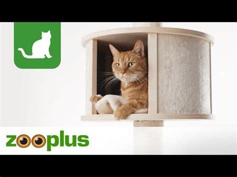 tiragraffi a soffitto tiragraffi a soffitto paradise xl per gatti zooplus