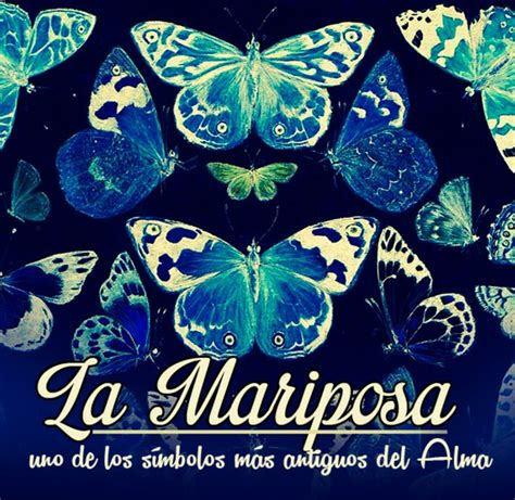 imagenes sobre mariposas mariposas