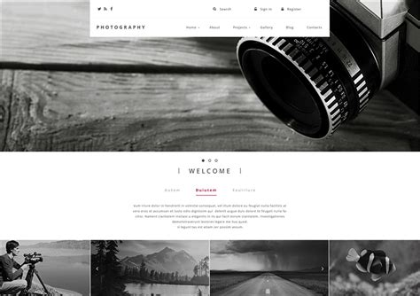 drupal themes photography 14 photography blog themes free premium templates