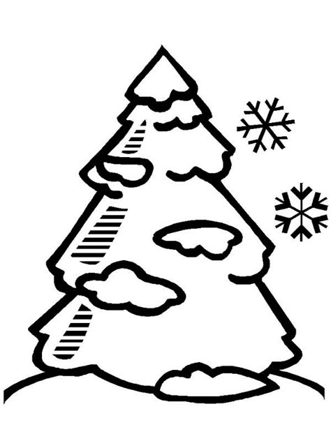 coloring page winter tree coloring pages pine tree coloring home