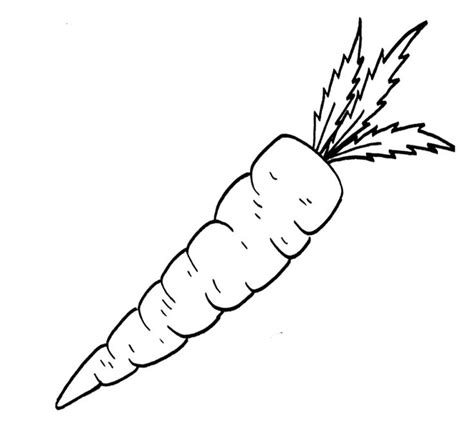 Vegetable Food Carrot Coloring Page For Kids Kids Carrot Coloring Pages