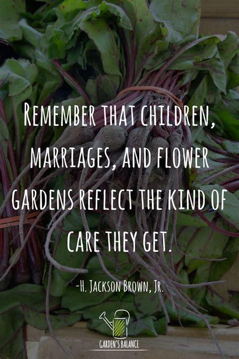 flower garden quotes best 25 garden quotes ideas on gardening