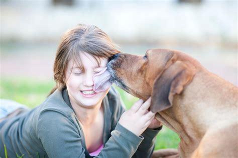 do dogs like kisses why do dogs like to
