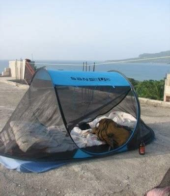 Large Dome Nets Blue mosquito net tent
