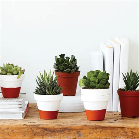 u herb indoor garden contemporary indoor pots and indoor pots and planters herb planters and pots for the