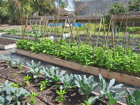 community gardens matching fund  sustany foundation