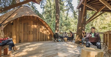 microsoft unveils amazing treehouse office  employees  brainstorm  fresh air