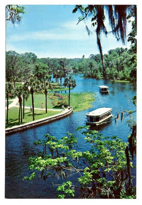 glass bottom boat tours fort myers beach 34 best florida postcards images on pinterest greeting