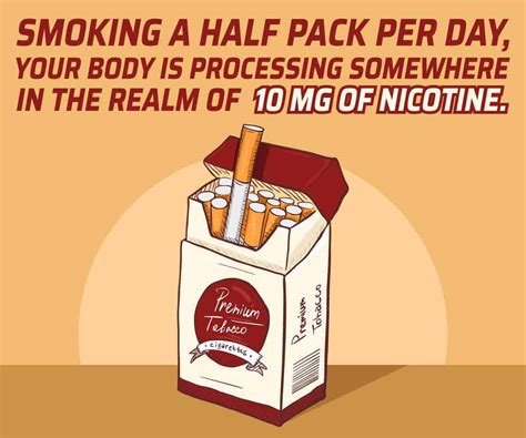 Tobacco Detox Time by How Much Nicotine Is In A Cigarette