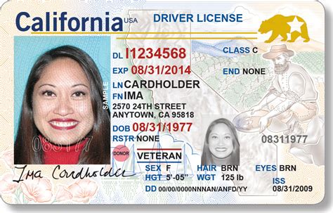 10 Year Background Check California - california driver s license a new look and procedure sfgate